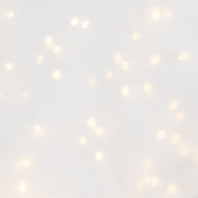 Twinkle Lights 10 x 10