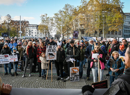 Why we march against fur (English)