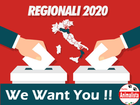 Pronti per le Elezioni Regionali 2020, e TU?