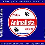 TESSERA_PAI_Dietro copia.jpg