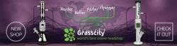 Grass City Head Shop
