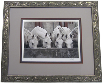 Horses Custom Framed