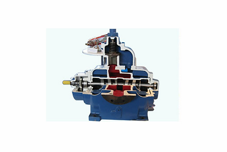 Double Screw Pump