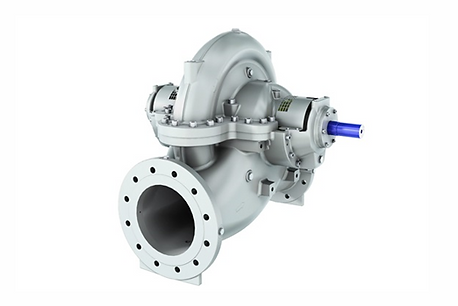 BB1 - Double Suction Axially Split Sludge Pump