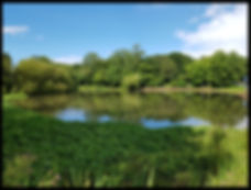 Walton on The Hill Surrey