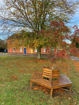 Seating under a tree