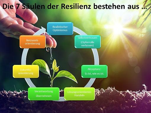 ResilienzV2-5.jpg