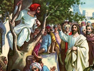 Thirty First Sunday in Ordinary Time