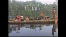 Yaõkwa - imagem e memória