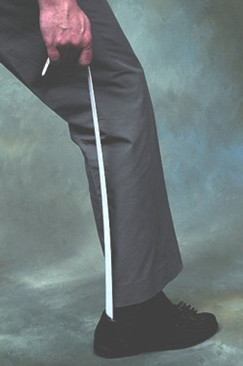 Extra Long Handled Shoehorn
