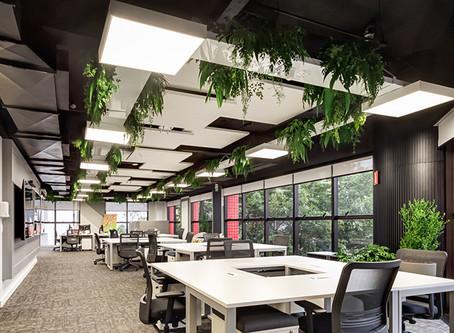 Acabamentos de Obra I Flexibilização de espaços e soluções para projetos