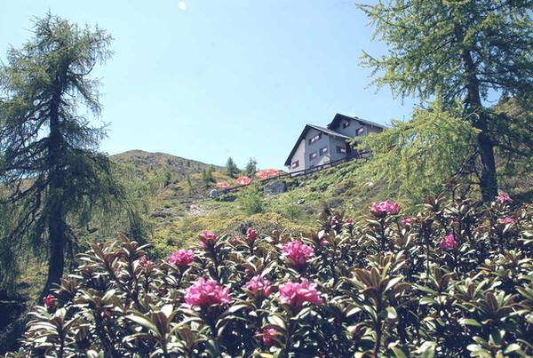 Goldeck Hütte