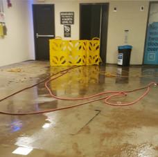 23-ucla-dwp-flood-emergency-relief-eleva