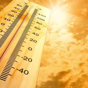 Cuida tu auto de las altas temperaturas