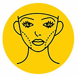 face contouring lines