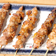 Chickenskewer