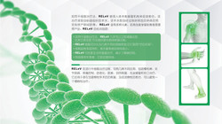 New Life_Regenerative Medicine _PPT 11
