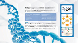 New Life_Regenerative Medicine _PPT 7