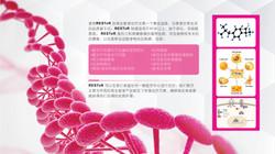 New Life_Regenerative Medicine _PPT 5