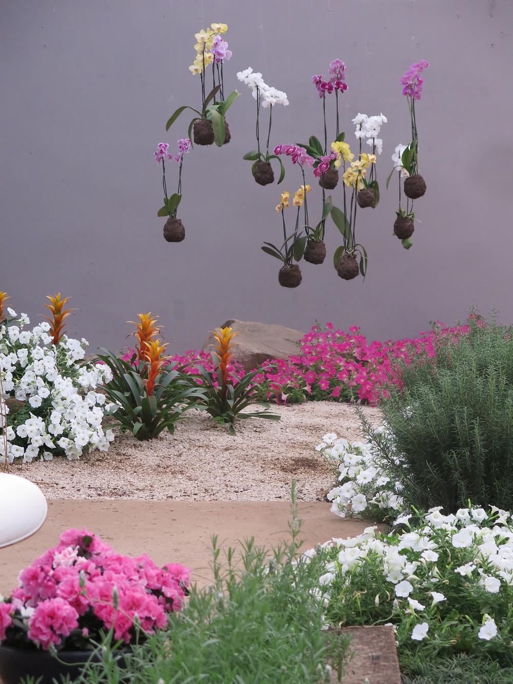 Kokedamas, Mostra de Paisagismo, Expoflora, projeto paisagístico Daniela Vieira, Estúdio Oh