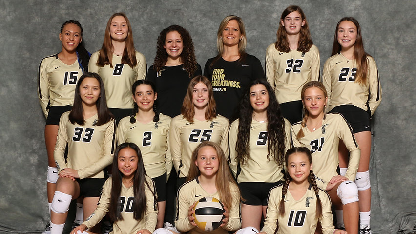 14 Gold (Gray) Team.jpg