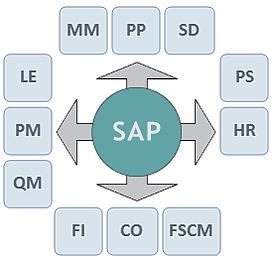 Infografika SAP ERP moduli