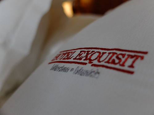 Kissen Logo Exquisit.JPG