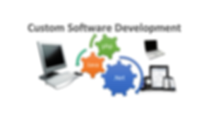 custom_software_development-VITS.png