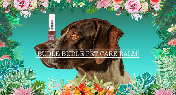 Soothes and protects dry and cracked noses (nasal hyperkeratosis) and paw pads or any dry skin. Veterinary dermatologist formulated with Organic Shea Butter, Jojoba Oil, Olive Oil, Mango Seed Butter, Argania Spinosa Kernel Oil, and Anise Fruit Extract, and Safflower.  It safely and naturally moisturizes and maintains normal skin health with non-toxic and organic ingredients.  SOOTHE, MOISTURIZE & PROTECT DRY & ROUGH PAWS:  Dried out, cracked & crusty paw pads are uncomfortable for your pet & can make walking painful. Fix that quickly with our easy to use salve delivering immediate soothing relief you can see & feel. Paws can be tender, raw, crusted & bleed due to rough terrain, dust, allergens, wind, winter snow, ice & salt, extreme hot & cold weather on walks. Our balm glides to relieve cracked, itchy, crusted, irritated & bleeding pads, restoring moisture & comfort.  You can rest easy knowing that our balm is ALL NATURAL & safe to be licked.  It does NOT contain any harsh chemicals, parabens, sulfates, or synthetic, artificial dyes or fragrances & is alcohol free. It has a pleasant natural scent & does not leave a greasy residue.