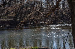 The Monocacy River