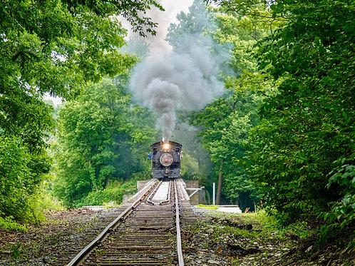 The Walkersville Southern Steam Train