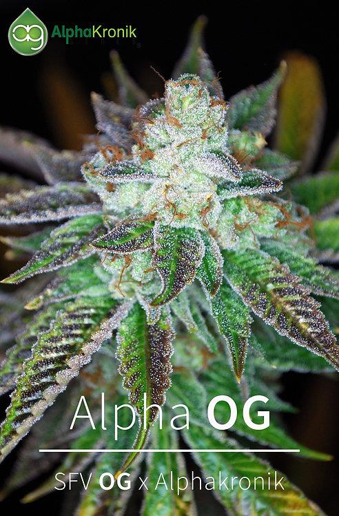 Alpha OG (SFV OG x Alphakronik)
