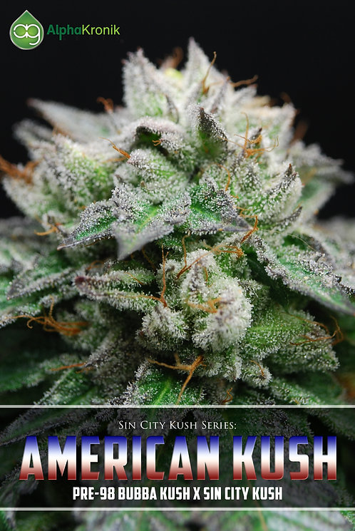 American Kush (Pre-98 Bubba Kush x Las Vegas Purple Kush) 10 Seeds