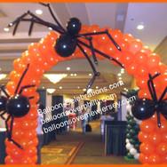 Spider Arch