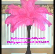 # 4 Black spandwex hot pink feathers.jpg