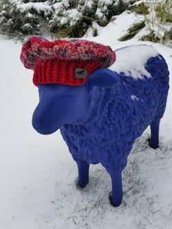 German Blue Sheep
