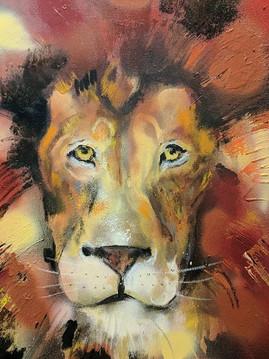 Lion - Warm Tones