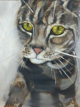 Painting Portrait - Kate's Cat