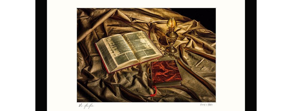 Vincent a Bíblia