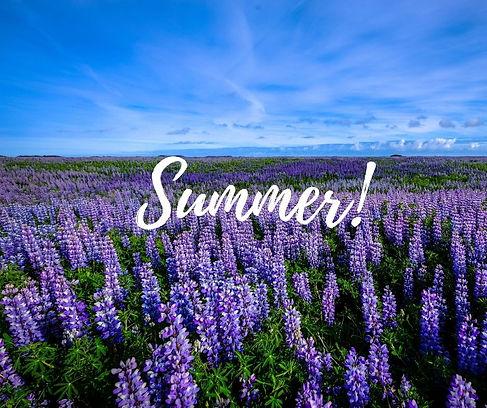 Summer landscape.jpg