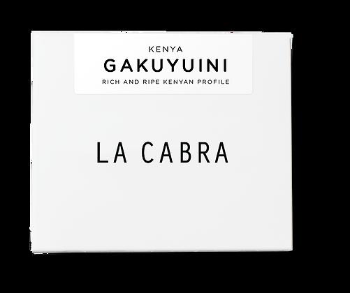 LA CABRA GAKUYUINI