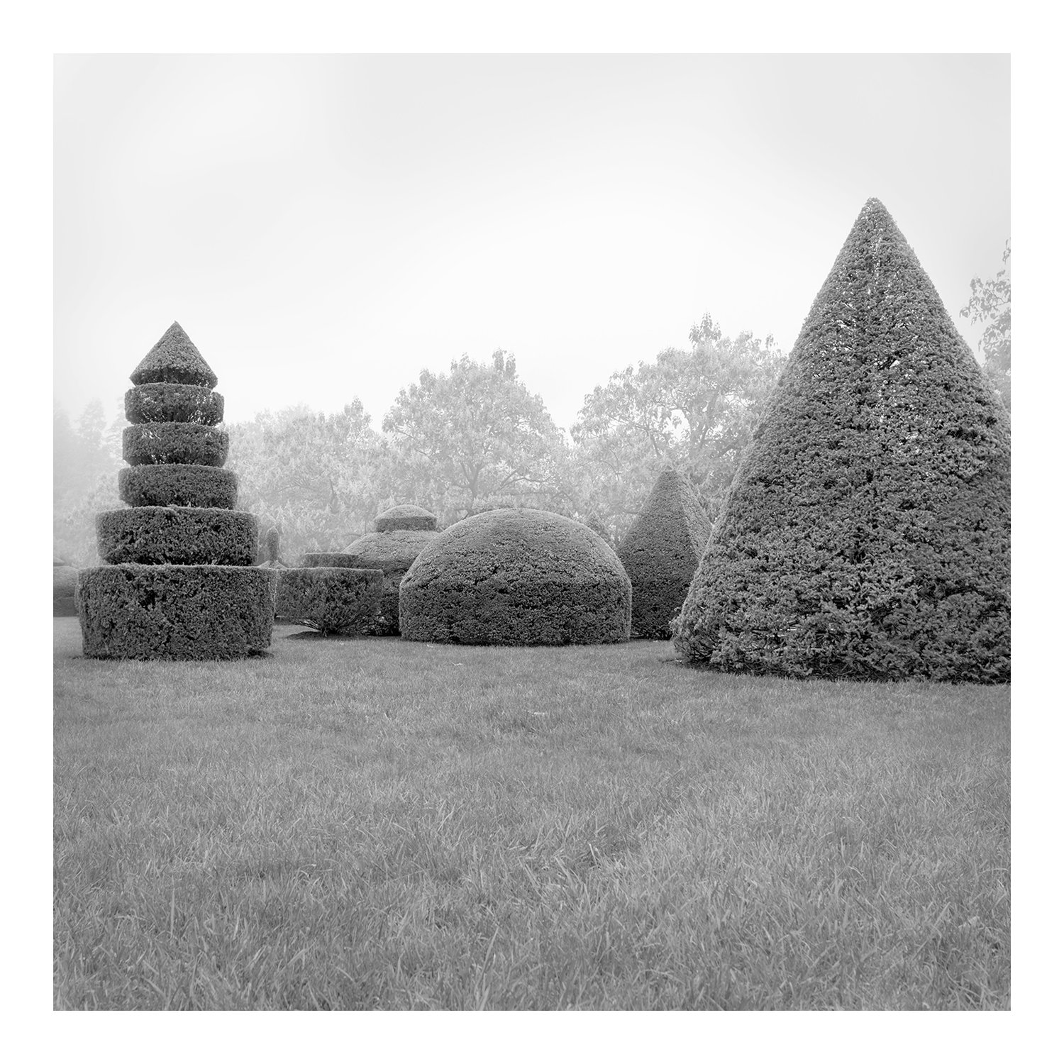 topiary_full_3b_longwood_100216