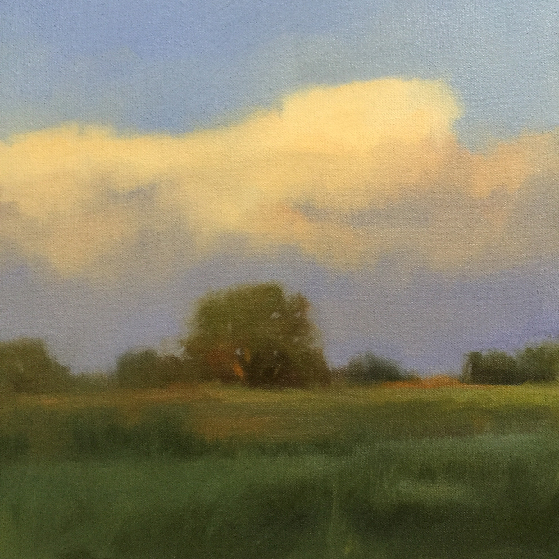Bells Bend Evening study
