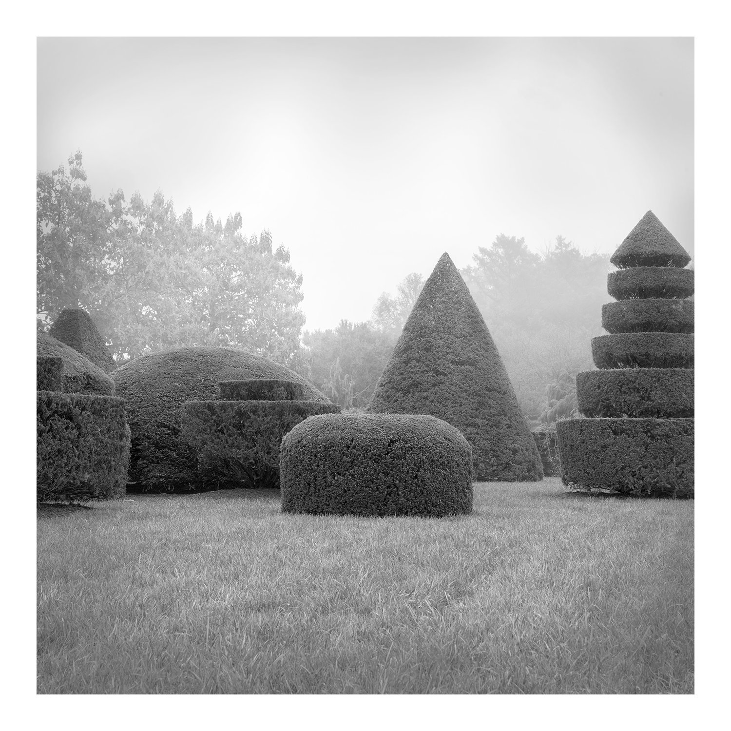 topiary_full_1c_longwood_100216
