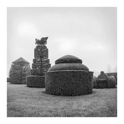 topiary_full_4_bw