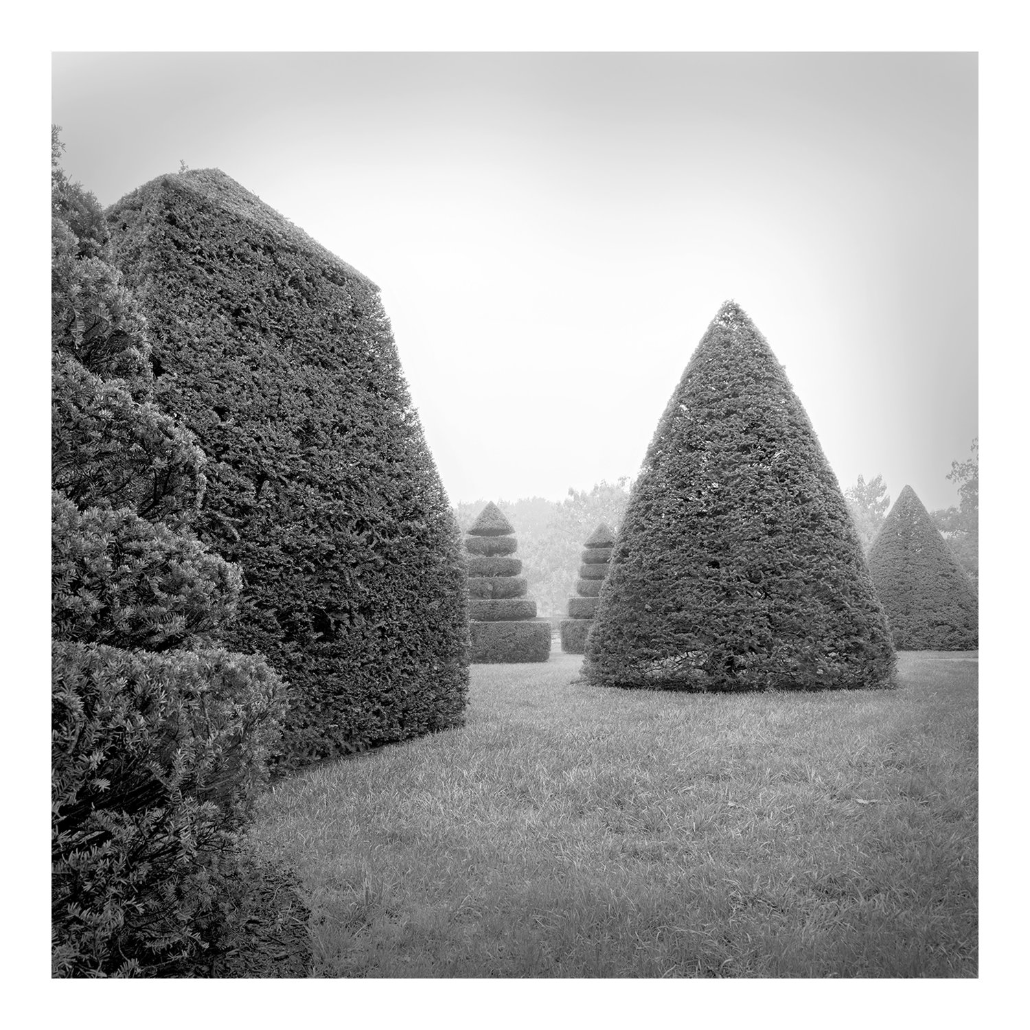 topiary_full_2c_longwood_100216
