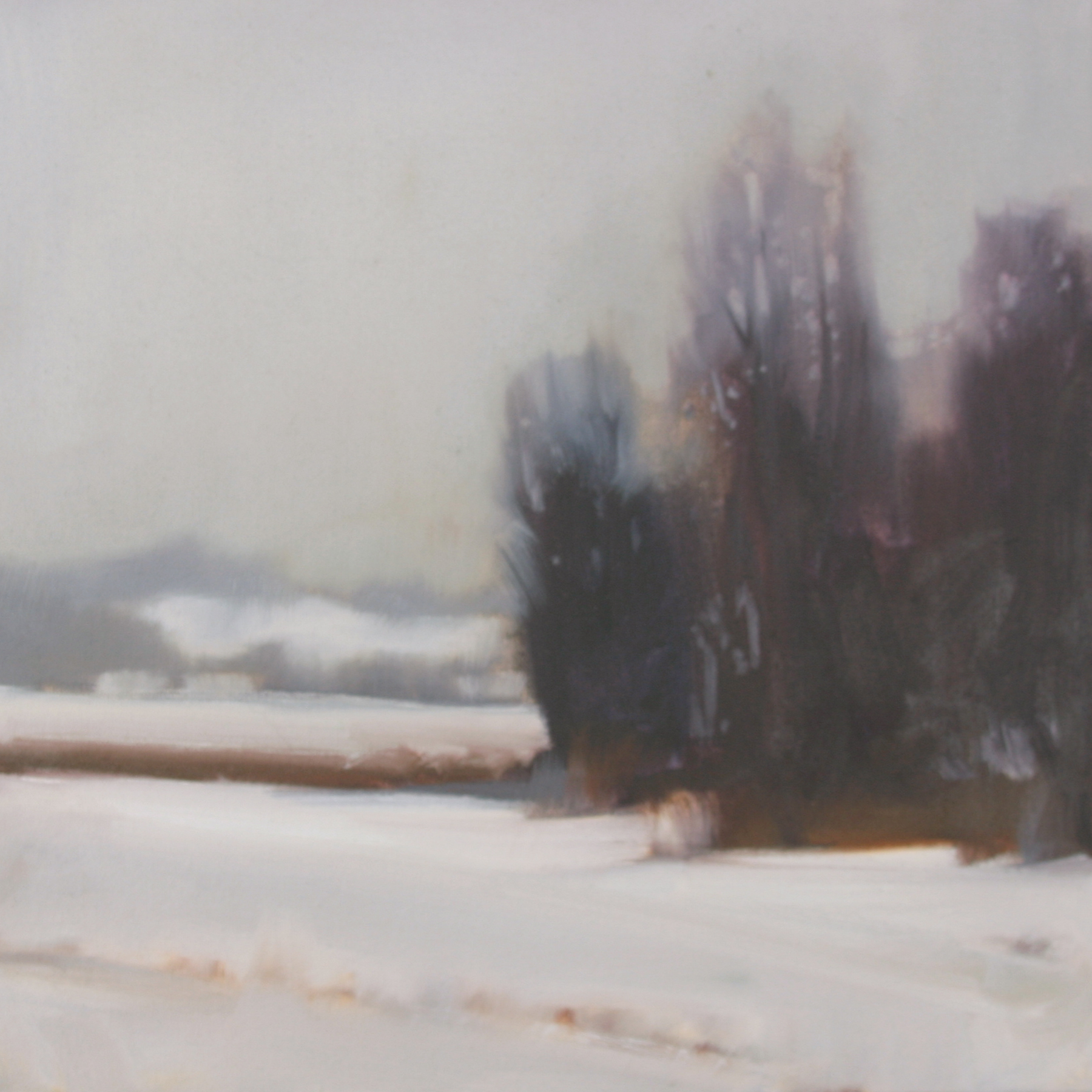 Winter Grove study