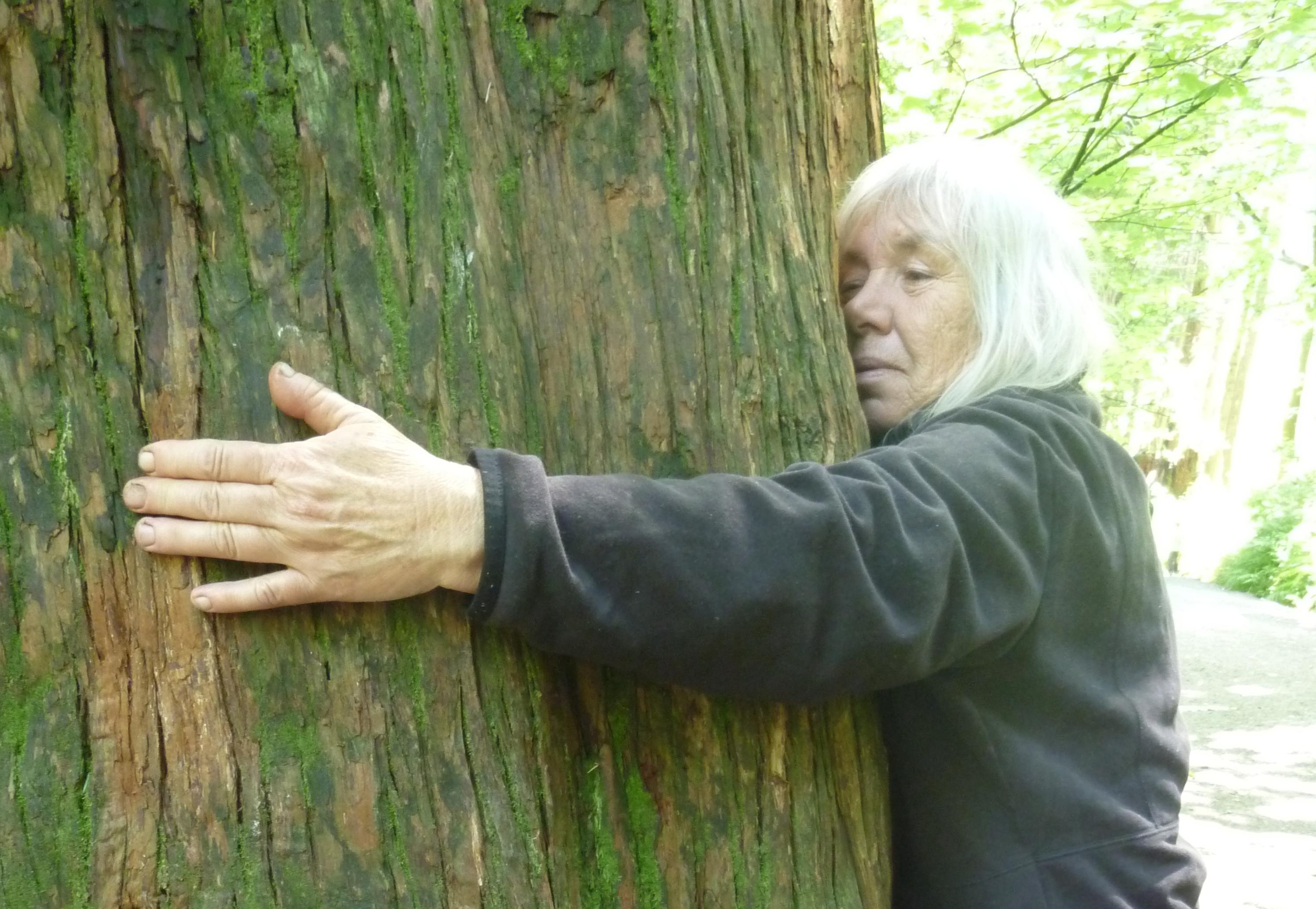 TREE HUG