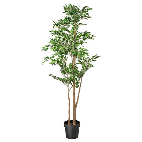 Large 6ft Artificial Weeping Fig Tree