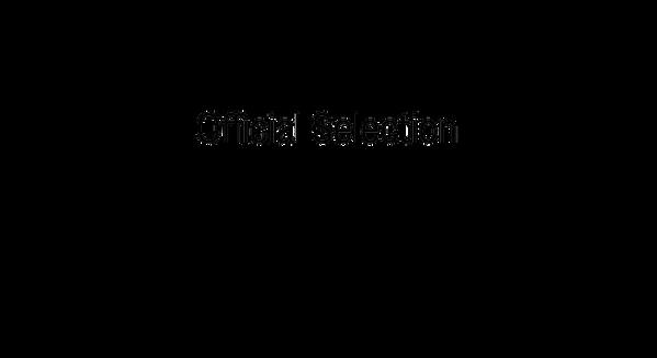 IIFILMFEST_laurel-wreath-vector-graphics